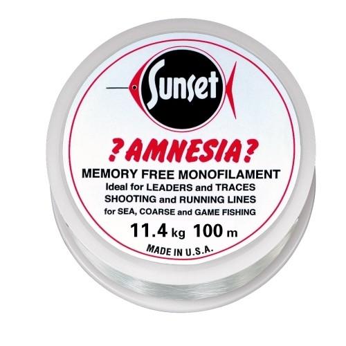 Amnesia Leader Vorfach, Klar,25lbs 100m