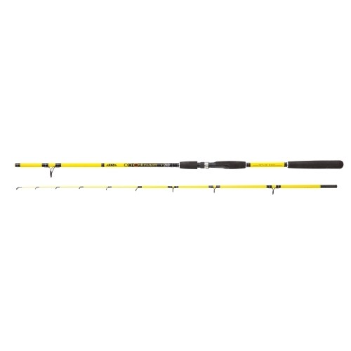 Angelrute Continuum 2,40 m 20-100 g