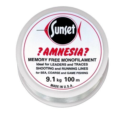 Amnesia Leader Vorfach, Klar, 20lbs 100m